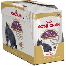 Royal Canin British Shorthair - влажный корм...