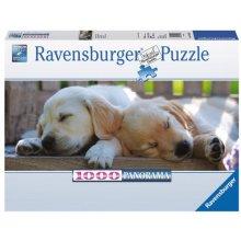 RAVENSBURGER 1000 EL. Land of Sleep
