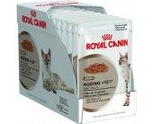 Royal Canin Ageing +12 Gravy влажный корм в...