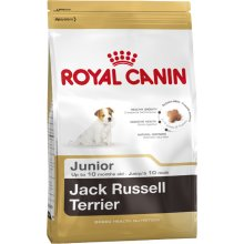 Royal Canin Jack Russell Junior 0,5kg