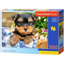 52a102534dd Castor 300 ELEMENTS puppy at the picnic 030187 - OX.ee