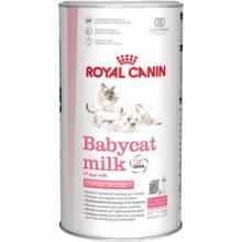 Royal Canin Babycat Milk kassitoit 0.3 kg