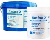 Nutratech Amino X 18 tähtsamat aminohapet...