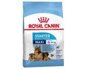 Royal Canin Maxi Starter 15kg (SHN)