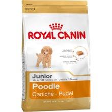 Royal Canin Poodle Junior 0,5kg