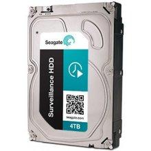 Seagate Surveillance ST4000VX000 4TB