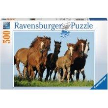 RAVENSBURGER RAVEN. 500 EL. Konie w g alopie