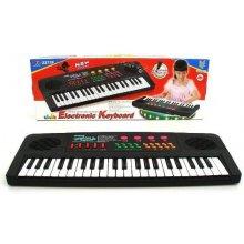 Playme Organy z mikrofonem i ładowarką