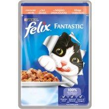 Felix Fantastic lõhega, grillitud liha...