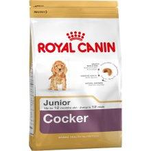Royal Canin Cocker Junior 1kg