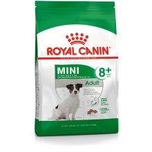 Royal Canin Mini Adult 8+ 8kg (SHN)