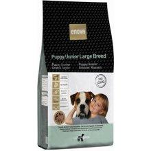 Enova Puppy/Junior Large Breed 14kg