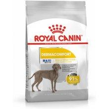 Royal Canin Maxi Dermacomfort - 10kg (CCN)