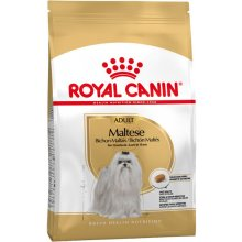 Royal Canin Maltese Adult 0,5kg (BHN)