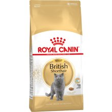 Royal Canin British Shorthair kassitoit 4 kg
