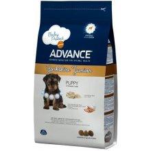 ADVANCE Yorkshire Terrier Junior 1,5kg
